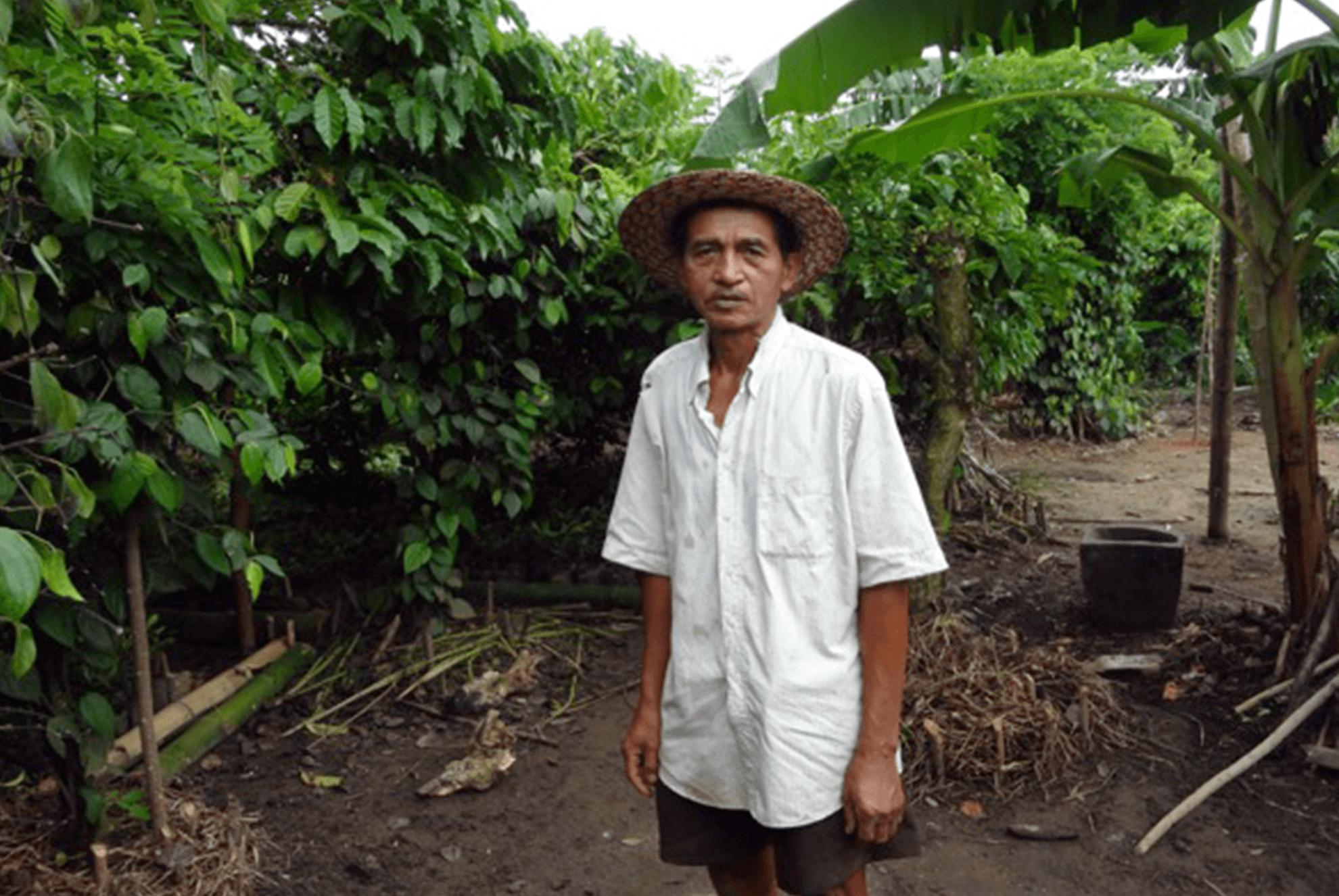 madagascar_farmer-pepper-660x442