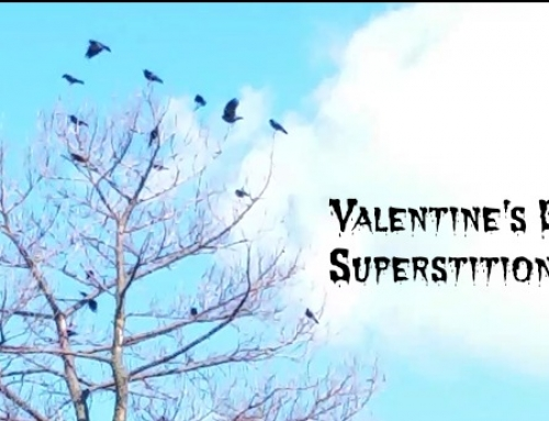 Valentine's Day Superstitions Spooky or Silly