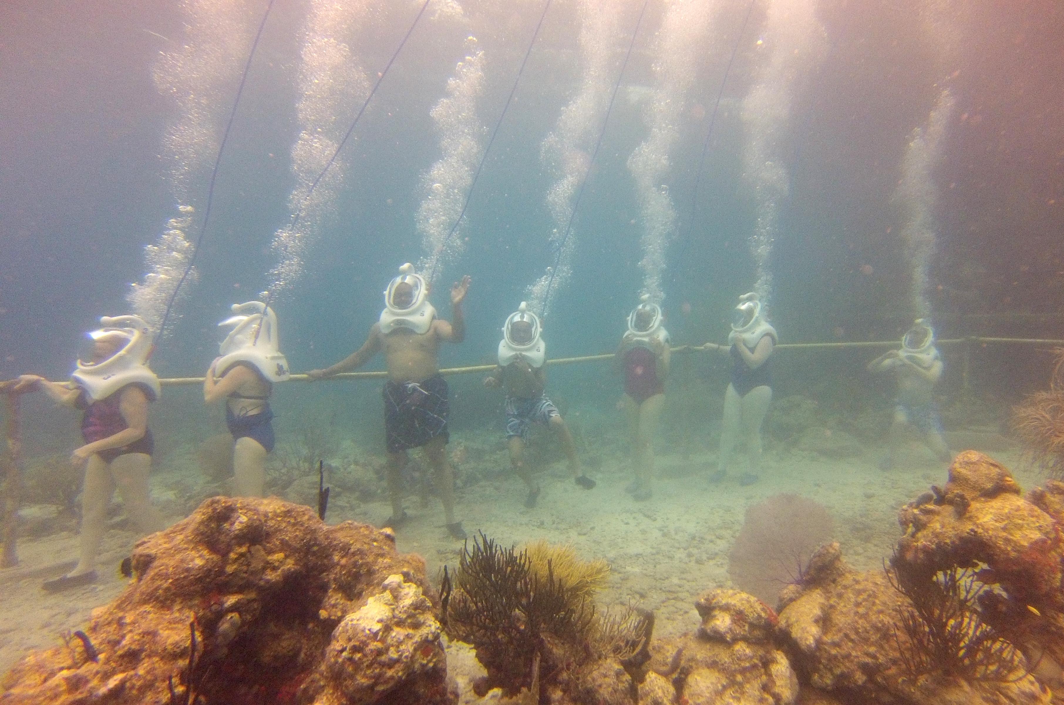 Sea Trekking Group