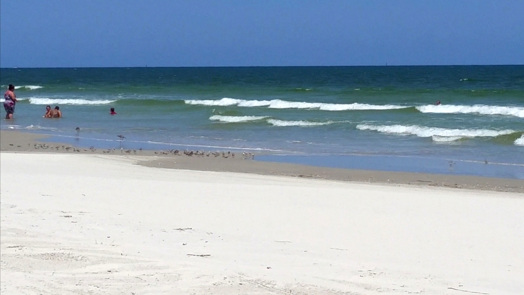 Peaceful and Secluded Florida Beaches --New Smyrna Beach